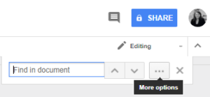 More options button in Find and Replace box in Google Docs