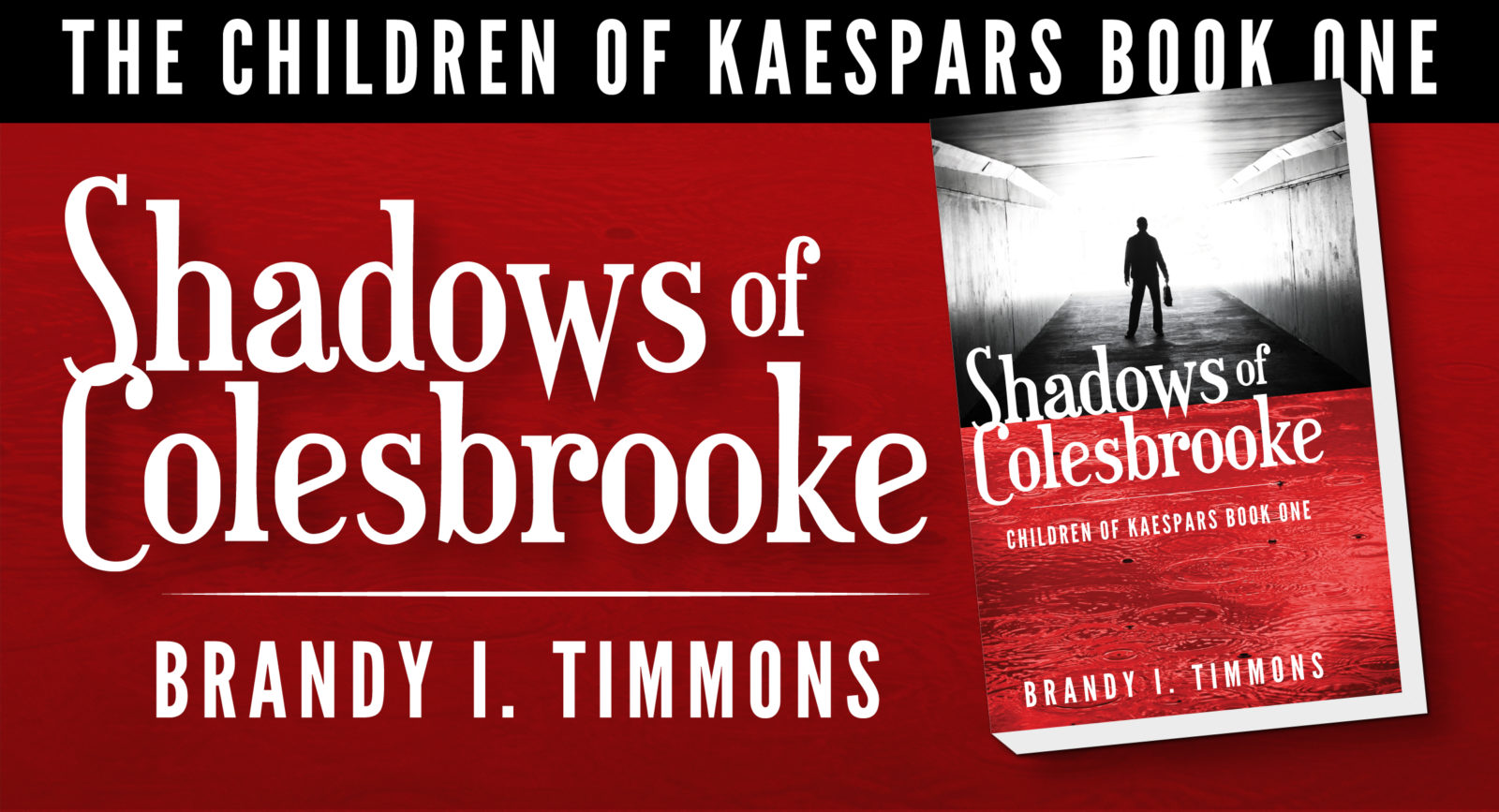 Shadows of Colesbrooke by Brandy I Timmons book 1 of Children of Kaespars