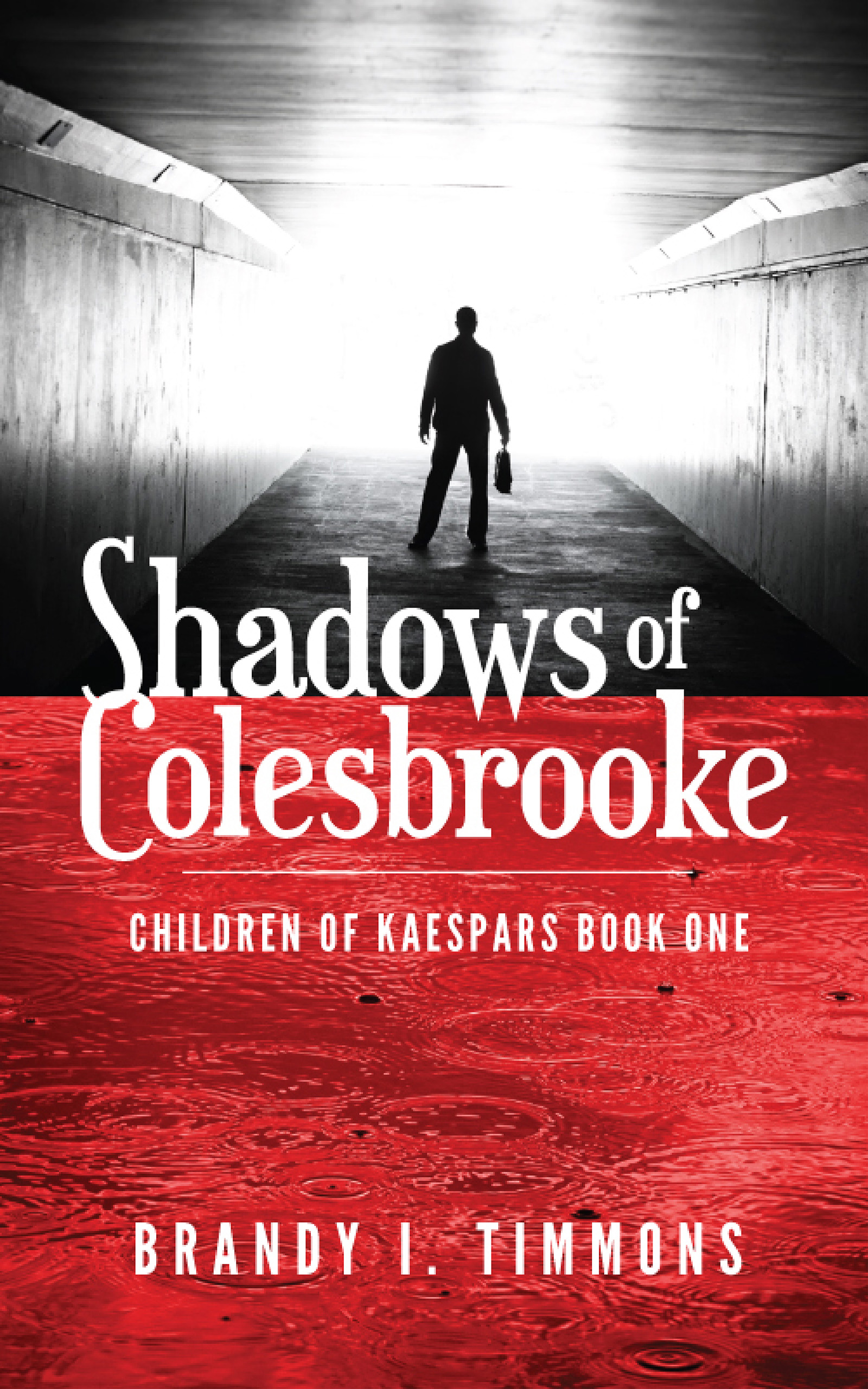 Shadows of Colesbrooke by Brandy I Timmons now on Amazon